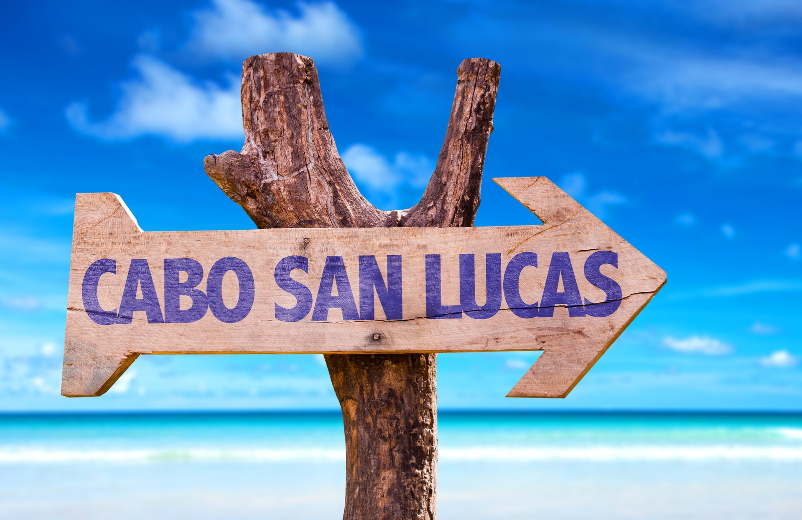 Grand Solmar Timeshare Highlights Cabo's Best Landmarks